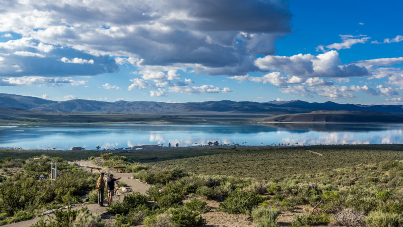 015-06-08 USA - Yosemite - Mono Lake 118-63